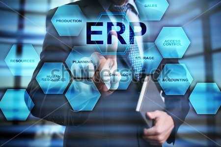 Customized Virtual ERP